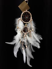 Small Twisted Cane and Turquoise Beads Dreamcatcher