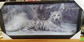 3D White Tiger Lying Picture
