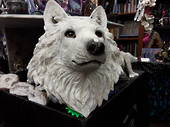 Large White Wolf Head