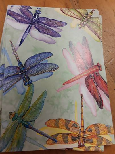 Dragonflies Card and Envelope