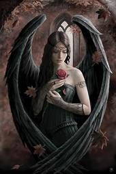 3D Anne Stokes Angel Rose