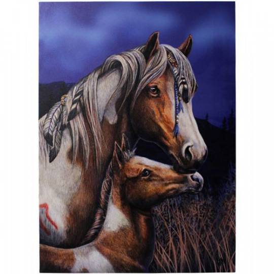 Small Apache Horse Canvas