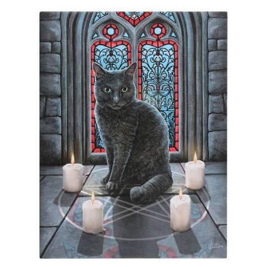 Small Sacred Circle Cat Canvas