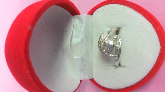KIwi and Silver Fern Ring