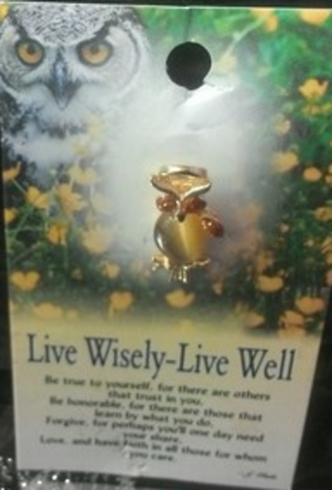 Thoughtful Angel Live Wisely Owl Angel Pin