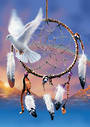Dreamcatcher Dove Native American Card and Envelope by David Penfound