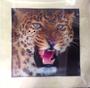 Leopard (2)5D Picture