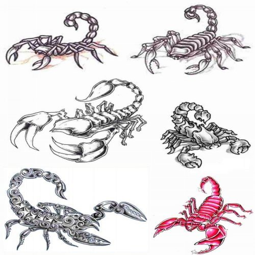 Piercing > Tattoo > Tattoo designs > scorpio tattoos