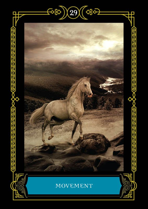 The Wisdom of te House of Night Oracle Cards1